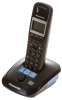 Радиотелефон Panasonic KX-TG2521RUT{АОН,полиф.мелодии, тел.книга 50 номеров, автоответч} темно-серый